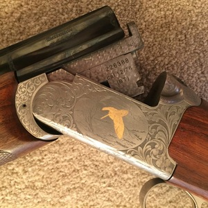Bettinsoli Diamond X Grade 12 gauge - Guns for Sale (Private Sales
