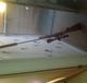 Img_4565_(2)gun