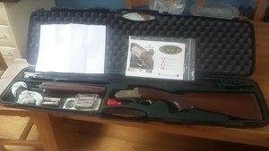 Gun_in_case